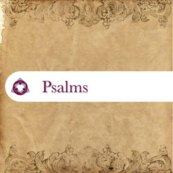 A Psalm for You Now